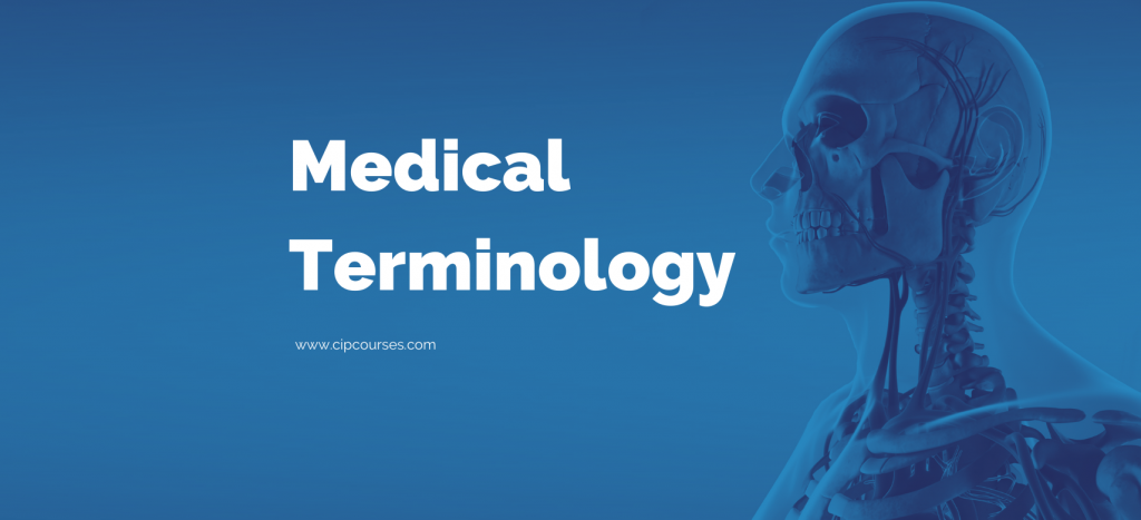 Medical Terminology Online Course and Curriculum