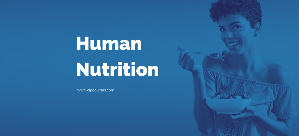 Human Nutrition Online Course Curriculum